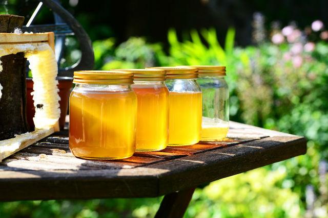 Najveći broj meštana se bavi pčelarstvom, a nekoliko gazdinstava je među vodećim u državi