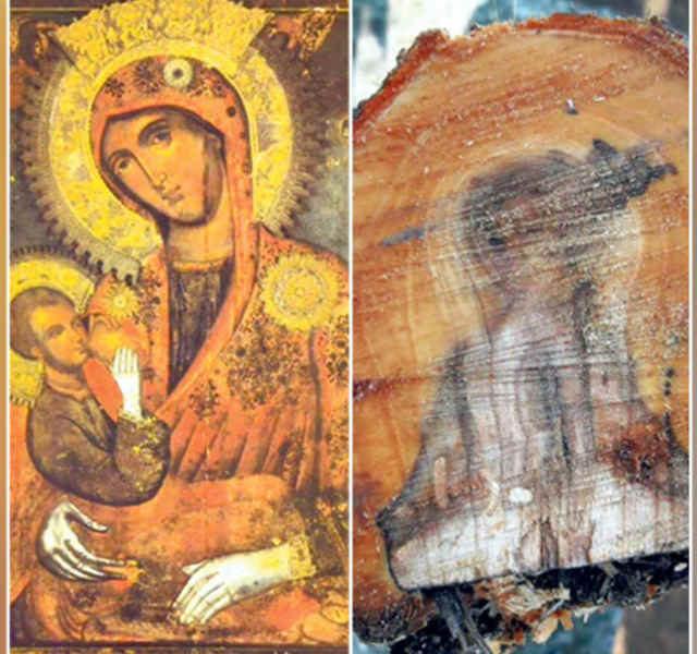 Lik Majke Božje pojavio se u drvetu i uneo radost i blaženstvo u srca: Čudo kod Aleksandrovca ne pamte ni najstariji meštani!
